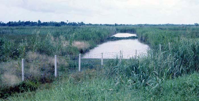 Bien Thuy Air Base, perimeter road flood channel. MSgt Summerfield, 1968: 26