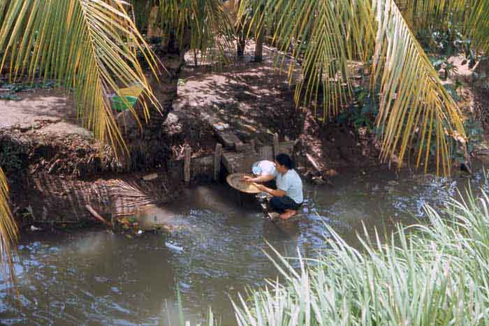 Bien Thuy Air Base, mamasan finds a quiet-cool palm tree as shade to do her laundry. MSgt Summerfield, 1968: 10