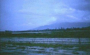Da Nang AB Perimeter Road N/E of runway, 1966, by Don Poss