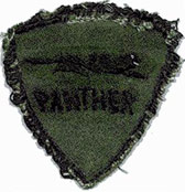 14) Patch: 366th APS