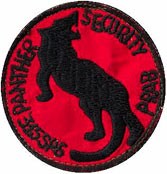 315th Security Police Squadron, patches, Phan Rang AB: RVN