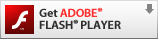 Get Adobe Flash