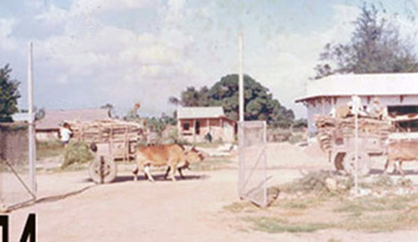 10. Phan Rang AB: Gate and road to town. Photo by Gary Phillips. c1966.