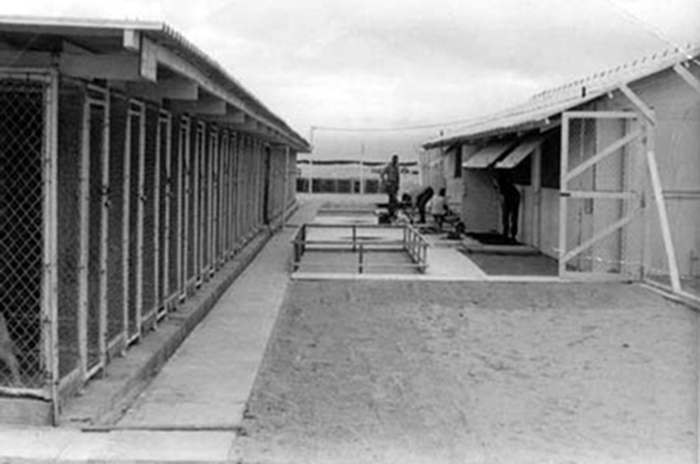 1. Tuy Hoa AB: 31st SPS, K-9 Kennels. Photo by Chris Raper. 1967-1968.