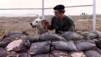 8. U-Tapao RTAFB, K-9 fighting Bunker. 1972-1973. Photo by: Steven Hughes, UT, 635th SPS K9. 1972-1973.