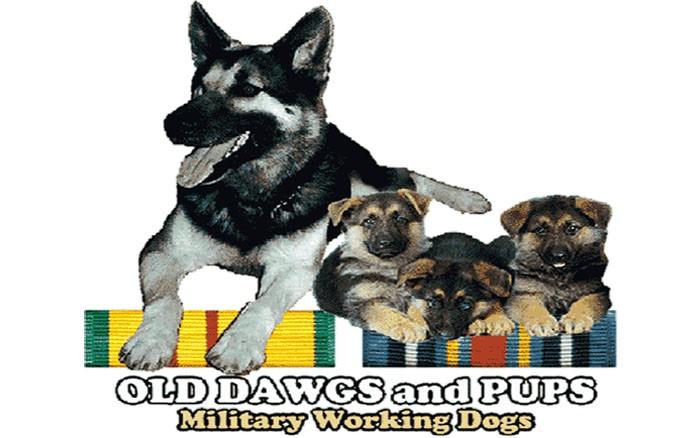 week-2001-09-11-odap-mwd-svn-and-terrorist-war-ribbons-1-don-poss-sm (2)