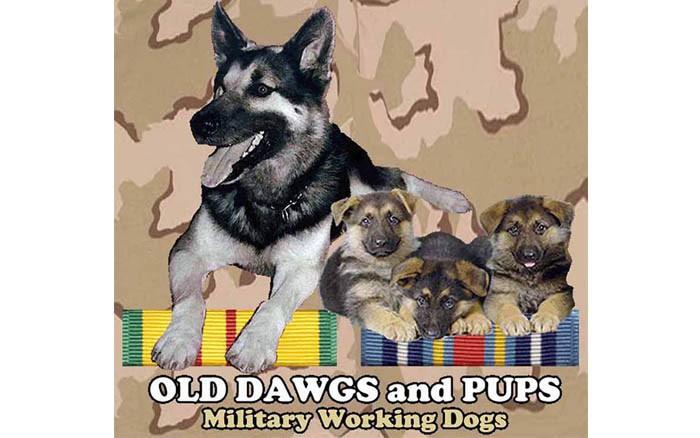 week-2001-09-11-odap-mwd-svn-and-terrorist-war-ribbons-2-don-poss-sm